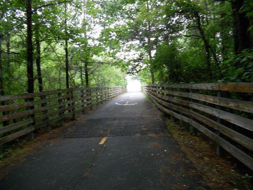 Marathon Forest