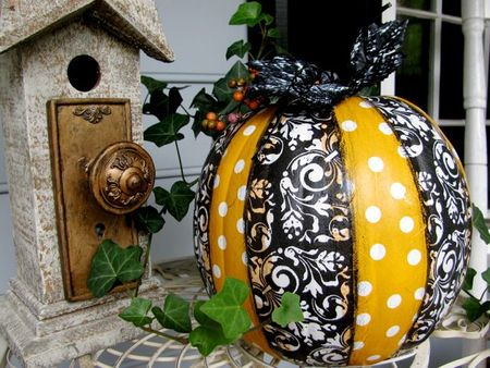 Blk:Orange Pumpkin