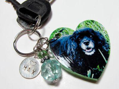 Pup:Max..